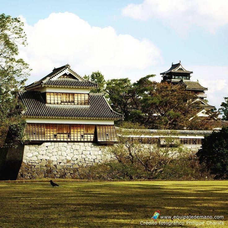 Castillo Kumamoto - Kumamoto prefectura de Kumamoto Japón Crédito fotográfico Philippe Charles #kumamoto #japon #japan #熊本城 #熊本県 #日本 #castillo #castle #nature #kumamotocastle #loves_nippon #nippon #ig_japan #team_jp_ #instajapan #icu_japan #turismo #potography #igtravel #travel #traveller #travelling #vacation #viajando #viajeros #viaje #equipajedemano by equipajedemanocol