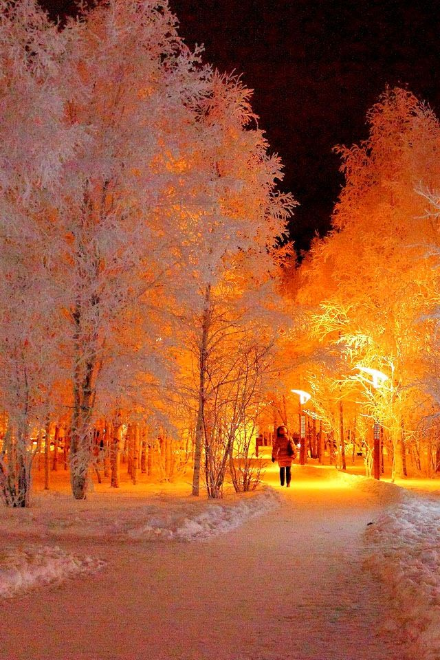 Winter's Glow O~Michigan ♥