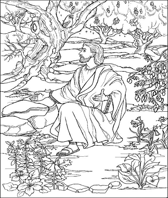 Jesus prays in the Garden of Gethsemane. This coloring page will help you prepare your Sunday school lesson on Matthew 26:36-56 on the Bible story of Jesus prays in the garden of Gethsemane.