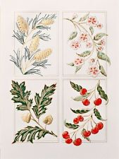 Ten Crane and Company Four Seasons Blank Cards and Envelopes - New