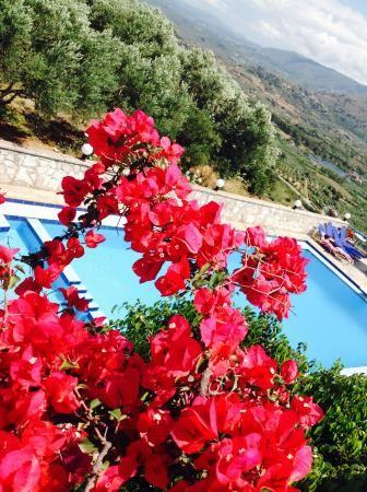 Marika Studios & Apartments (Εξώπολη, Ελλάδα) - Διαμέρισμα Κριτικές - TripAdvisor