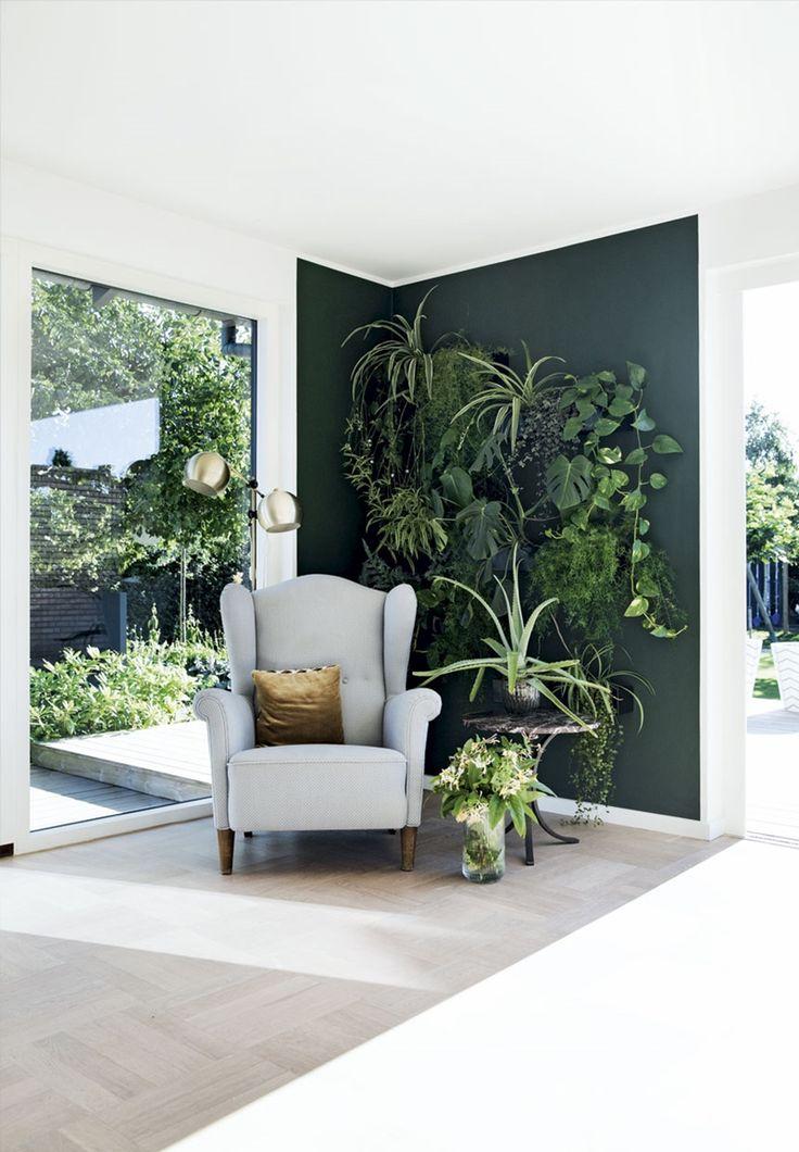 dark green paint + plant corner