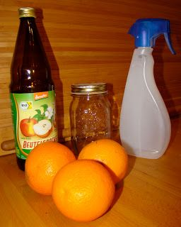 Putzmittel aus Orangenschale und Essig