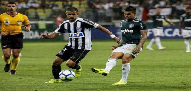 Assistir Palmeiras X Santos Ao Vivo Online 23 02 2019 Hd
