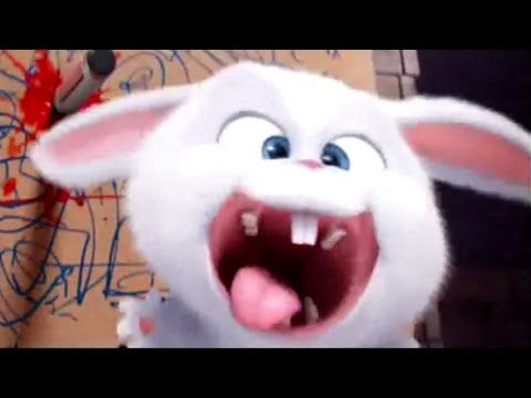 THE SECRET LIFE OF PETS TV Spot #12 - Ball Of Fluff (2016) Animated Comedy Movie HD - YouTube