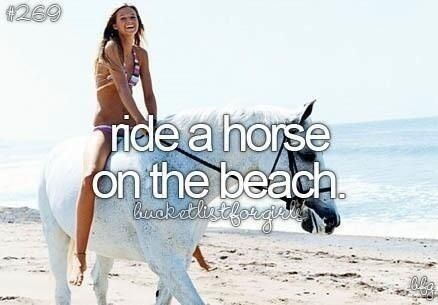 The other day I saw someone riding a horse on the beach! It was awesome!!! I have always wanted to try it!