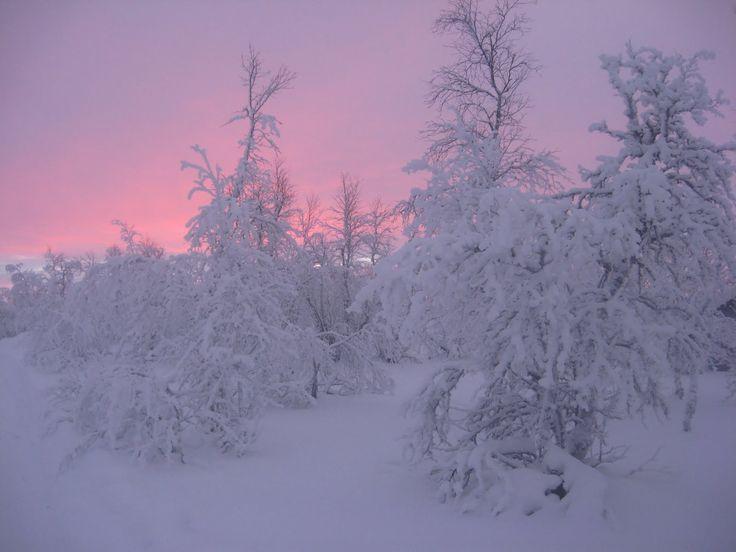Winter in Finnmark county - Norway