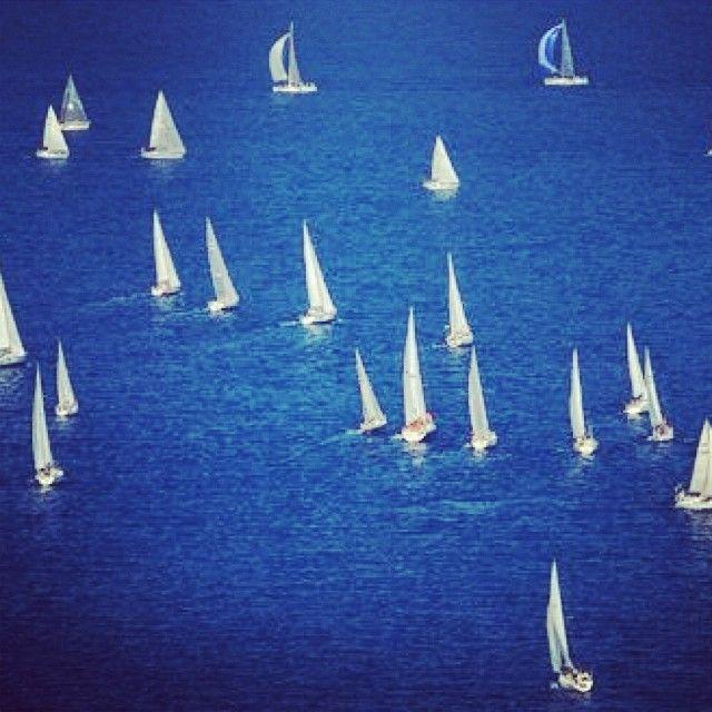 #lemnos #limnos #lemnosisland #island #blue #colors #sailing #pravlistravel #pravlis #northaegean #northaegeanislands #igtravel #ig_travel #instagood #instalike #instagreece #insta_greece #instatravel #travel #travelgram #vacation #visitgreece #visitlimnos #sea #greece #summer more info @ www.pravlis.gr