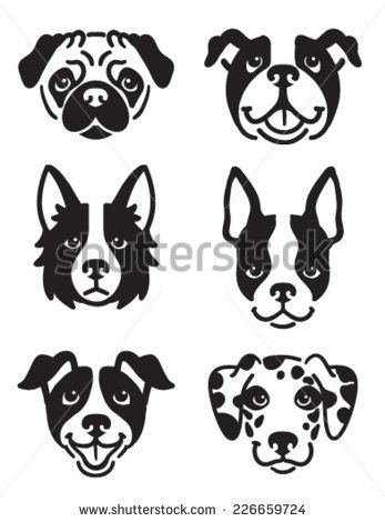 A set of 6 dog icons featuring the faces of a Pug, English Bulldog, Border Collie, Boston Terrier, Jack Russel Terrier, and a Dalmatian. Black and white vector symbols. - stock vector