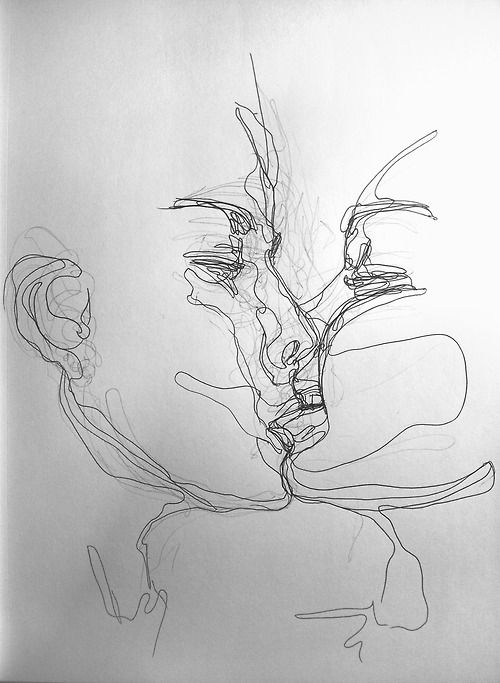 Contour Line Drawing Person : Continuous line drawing to show the connection of kiss