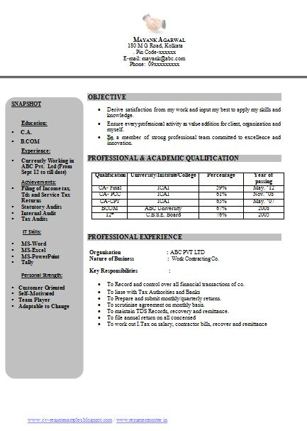 professional curriculum vitae resume template for all job seekers sample template example of beautiful excellent