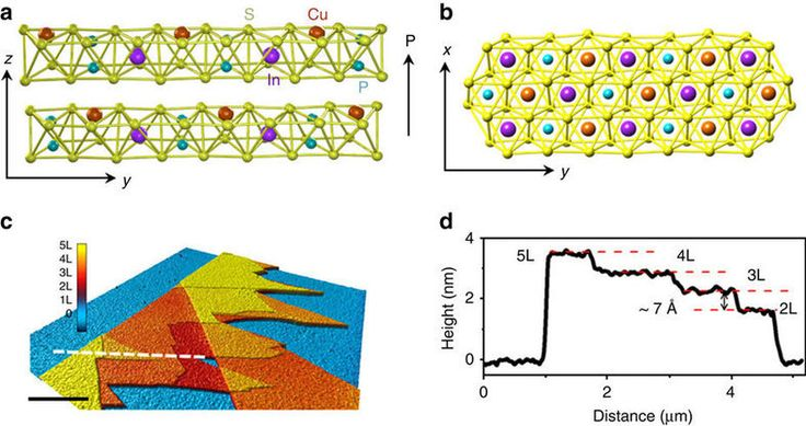 Room temperature out-of-plane ferroelectricity at ultrathin atomic limit demonstrated
