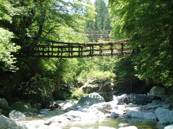 Oku-Iya Niju Kazura Bashi (Double Vine Bridges) #japan #shikoku #tokushima