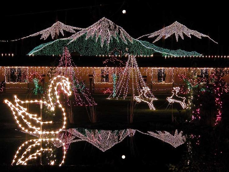 warm beach camp lights of christmas - Teardrop Christmas Lights