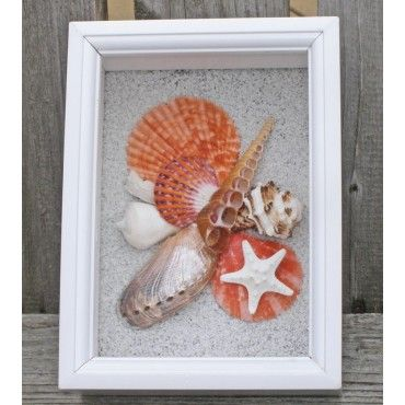 Need to do this with my shells from vaca! Orange Shell Shadowbox