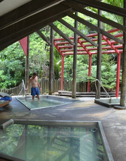 Morere Hotsprings | Gorgeous hot and cold springs set amid 364 hectares of rainforest