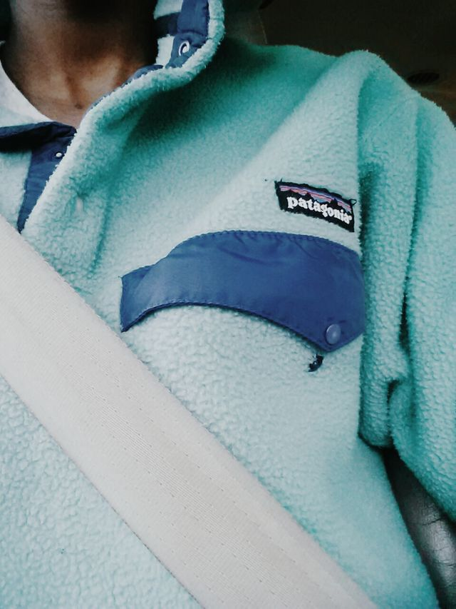 Patagonia pullover.
