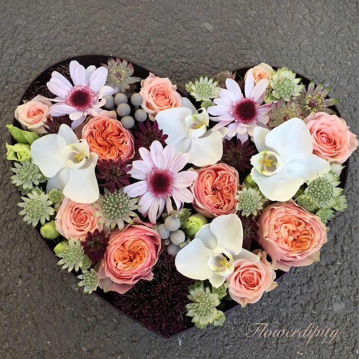 Flowerdipity love #flowerdipity #heart #flowers #orchids #vuvuzela #brunia