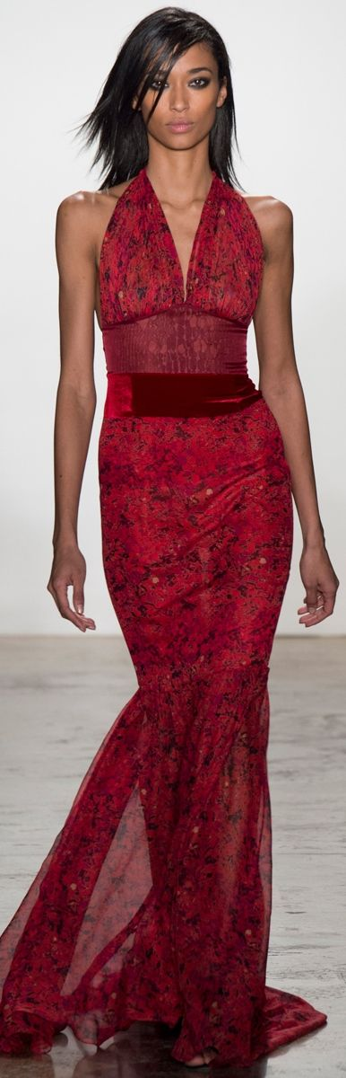 Sophie Theallet RTW Fall 2014