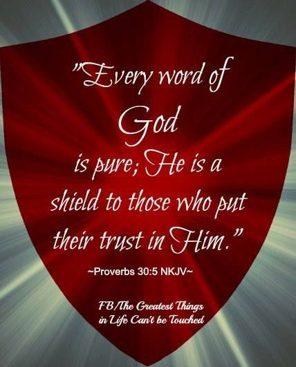 Proverbs 30:5