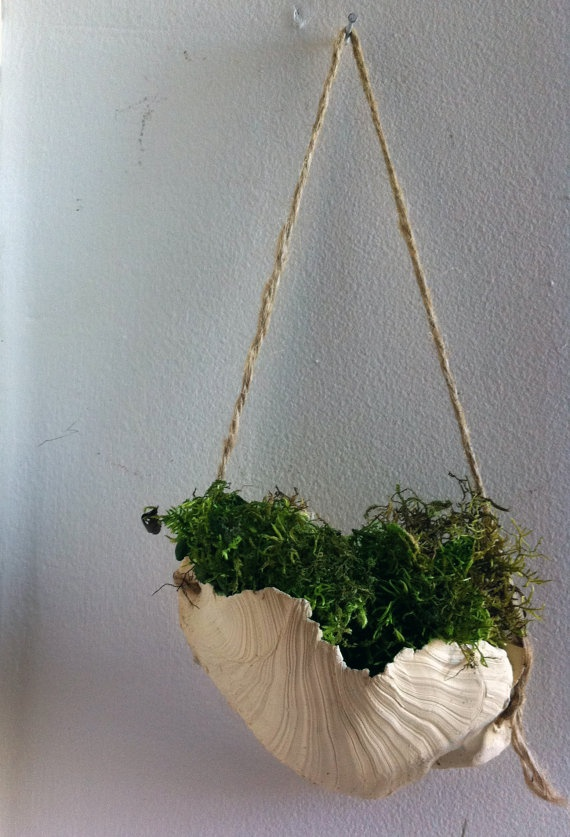 Hanging Wall Planter by KMcWdesigns on Etsy, $43.00
