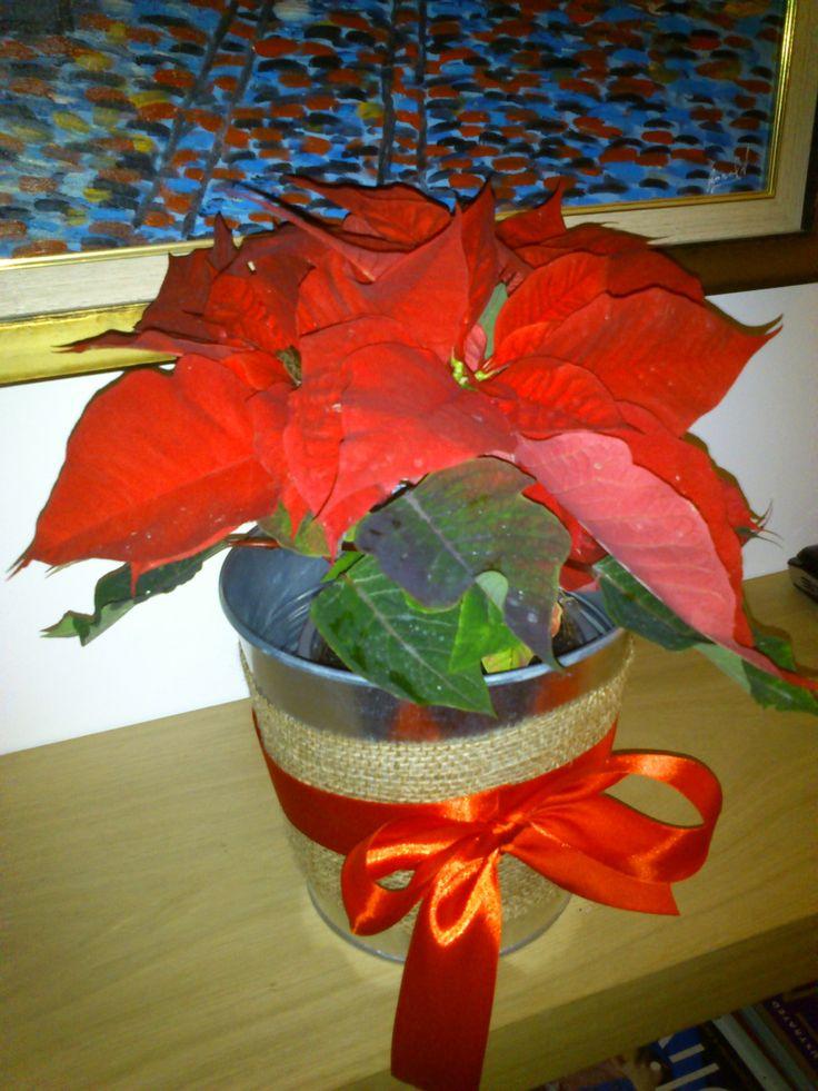 burlap & red satin ribbon