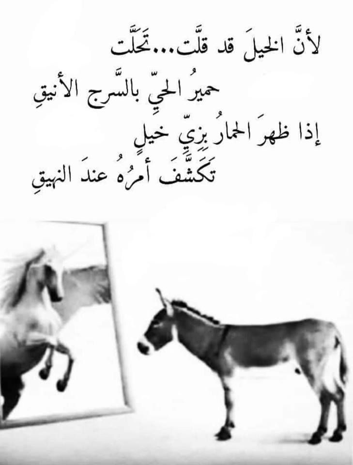Pin By Roqaya On شعر Quotes For Book Lovers Cover Photo Quotes Words Quotes