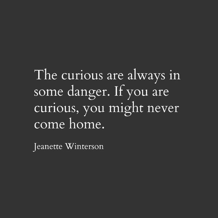 Jeanette Winterson. Quote. Literature. Curious. Curiosity. Home.