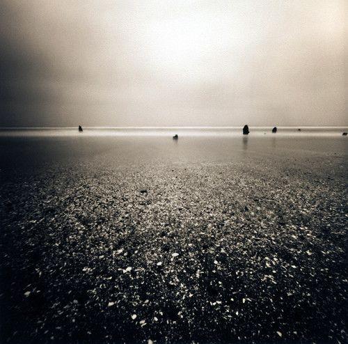 An Oceanic Ghost Forest by Danielle Hughson. Pinhole photo