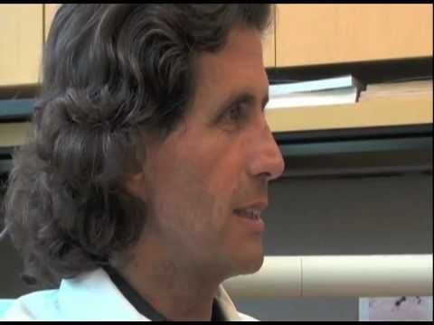 MESOTHELIOMA INSIGHT: Dr. Michele Carbone Genetics and Mesothelioma