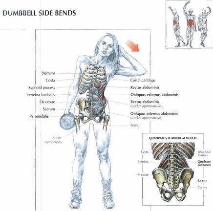 Dumbell Side Bends