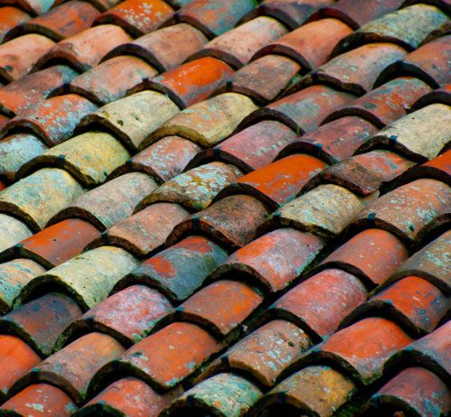moss covered clay roof tiles