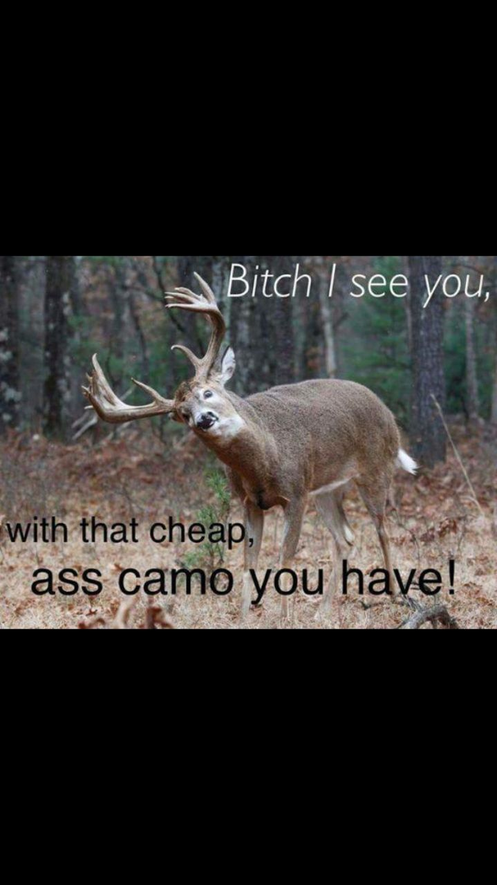 Funny Hunting Quotes 255 Best Quotes Images On Pinterest  Ha Ha Quotations And Truths