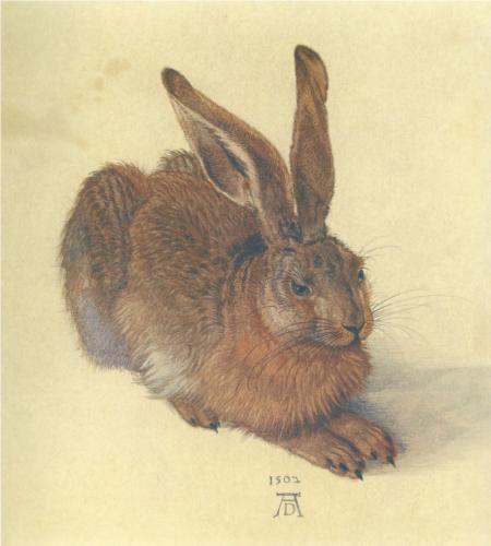 Hare - Albrecht Durer, 1502 ( Albertina, Vienna, Austria), Wikipaintings