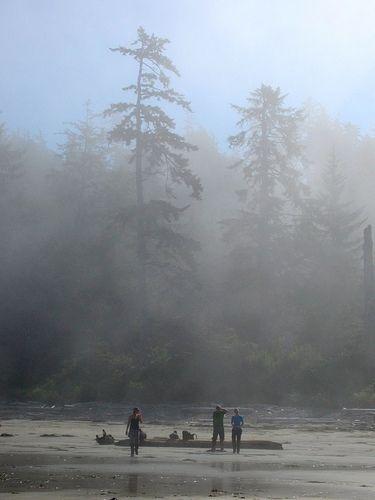 Hiking the North Coast Trail, Cape Scott, Vancouver Island