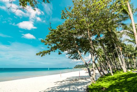 Bintan Island is still a hidden gem…for now.    Bintan Island has enjoyed a relatively low profile in recent years, however, now's the best time to go – in the coming years, the Indonesian government is developing chartered.