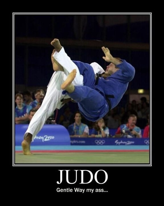 Martial Arts are always refered af a gentle sport. Try to explain that to the…
