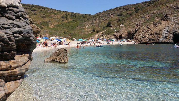 Η παραλία Αλμυρίχι είναι παραλία των Μεσοχωρίων Νότιας Εύβοιας