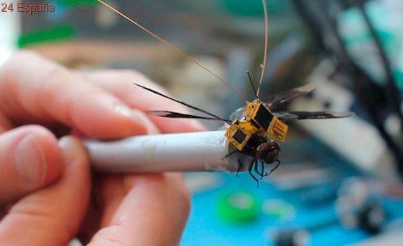 El dron más pequeño del mundo es una libélula