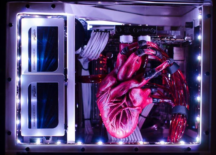 Heartbeat Computer Build (2)