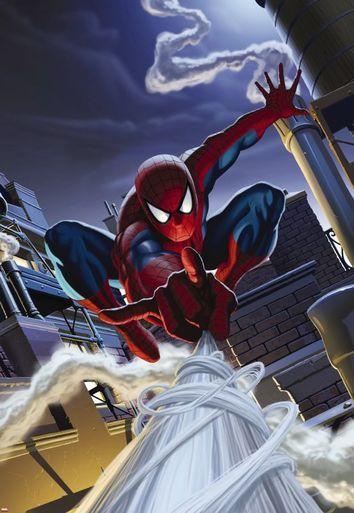Spiderman Rooftop Photomural