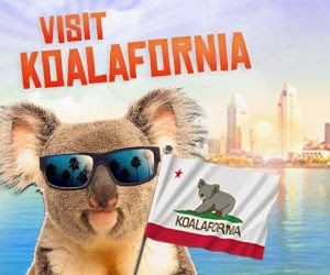 Welcome in Koalafornia !! (ou visite guidée du zoo de San Diego) | Il est 20h à Los Angeles