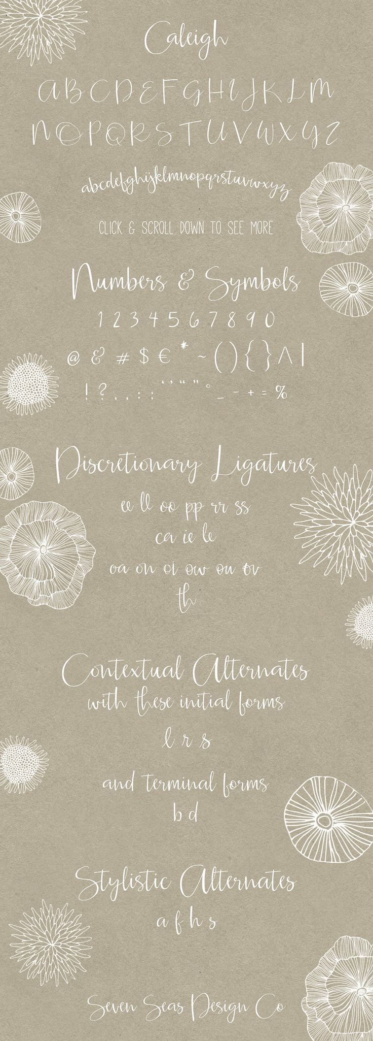 Ad Caleigh Script Font with Bonus by