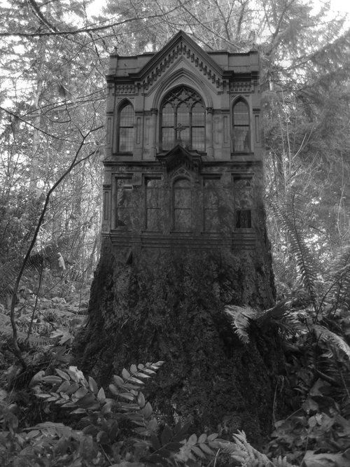 Absolutely Beautiful! | Gothic home in the forest. I would love to visit that place.