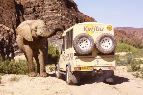 Foto safari in Namibia con di Scirocco Tours by Press Tours