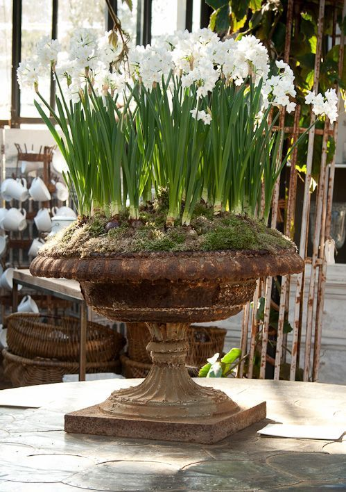 Antique garden urns add so much charm to your decor! Come tour our Victorian house… the BEST part is the decorating! I LOVE salvaged and repurposed antiques and there are so many uses for this old, cast iron, Victorian planter!