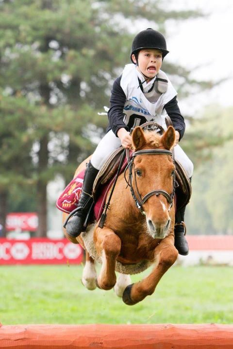 Love the expression- pretty sure that at least the pony is having fun!