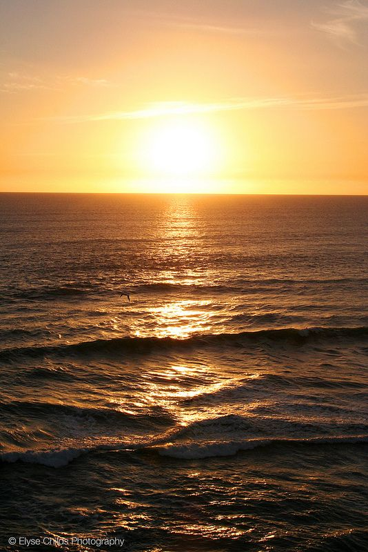 Sunset from Muriwai Beach | © Elyse Childs Photography