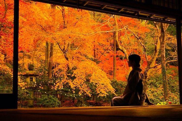 2ヶ月間限定の幻の絶景。人生で一度は見たい京都「瑠璃光院」の秋の絶景とは 12枚目の画像