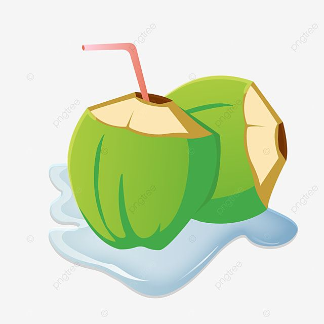 Green Coconut Drink Straw Fruit Coconut Png And Vector With Transparent Background For Free Download Coconut Drinks Coconut Vector Coconut